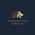 Evolution Virtual Company Logo